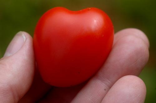 En tomat formad som ett hjärta